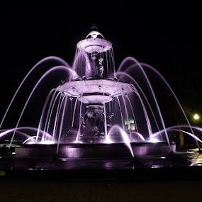 Quebec City Parliament Building Fountain by Dave Davenport - City,  Street & Park  Fountains ( quebec, night photography, street, fountain, street photography,  )