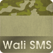 Wali SMS Theme: Camouflage