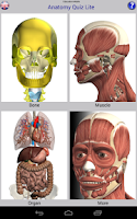 Screenshot of Anatomy Quiz Free