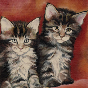 Maine Coon Kittens by Veronica Blazewicz - Painting All Painting ( cats, animals, cat, maine coon, art, pets, kittens, feline, oil painting, painting, artwork )