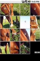 Screenshot of iSlider Horse Slide Puzzles