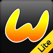 Wizzmo Lite Car System