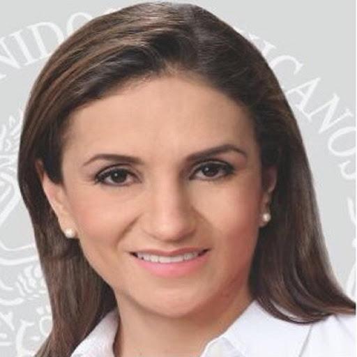 Dip. Federal Irazema Gonzalez