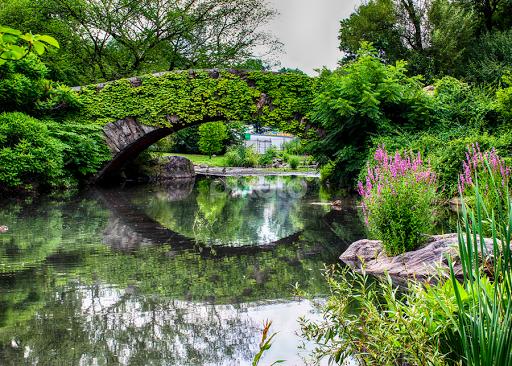 Central Park Landscape | City Parks | City, Street & Park | Pixoto