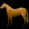 Horse Racing NEWS icon