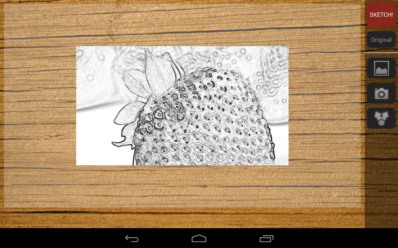 Pencil Sketch Photo Effect - screenshot