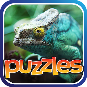 Lizards & Reptiles Free Puzzle for PC and MAC