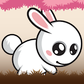 White Bunny - Bunny Adventures