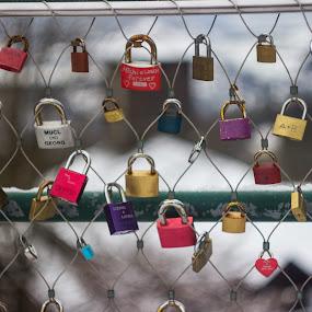 Lock Eternity . by Daniel MV - Artistic Objects Other Objects ( color, colors, snow, locks, lock, bridge, landscape,  )