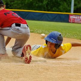 by Ross Bolen - Sports & Fitness Baseball (  )
