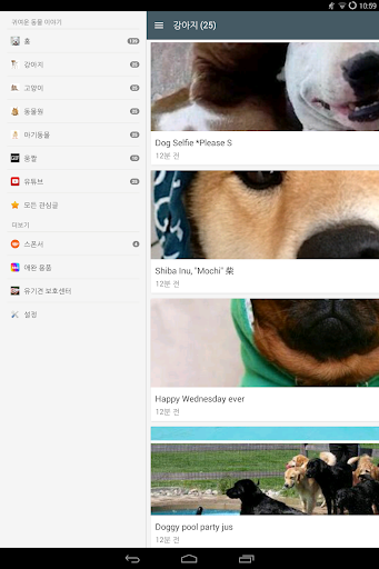 免費娛樂App|CAS - Cute Animal Story2|阿達玩APP