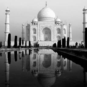 Reflection of Taj Mahal, symbol of Love by Amitabh Mukherjee - Black & White Buildings & Architecture ( love, 7 wonder, reflection, white, taj mahal, agra, india, monument, beauty, black,  )