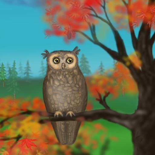 Owl Of A Season Wallpaper Lite Android APK Download Free By DOJ Interactive