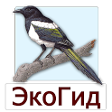 EcoGuide: Russian Birds icon