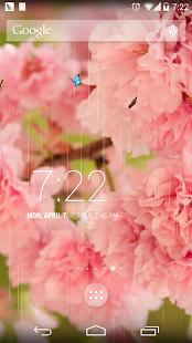 玩個人化App|春天繽紛櫻花壁紙免費|APP試玩