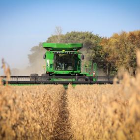 Harvest by Kenton Knutson - Artistic Objects Industrial Objects ( combine, harvest, farming, soybeans, fields,  )
