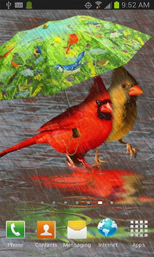 CARDINALS IN THE RAIN LWP
