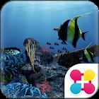 Sea Life Wallpaper Theme icon