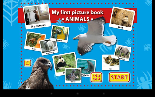 My First Picture Book Animals
