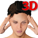 3D Face Acupressure icon