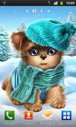 かわいい犬甘い子犬が彼のドレス