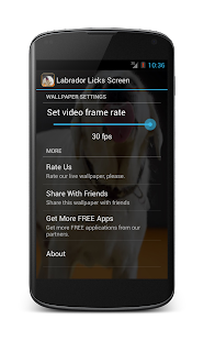 Labrador Licks Screen LWP - screenshot thumbnail