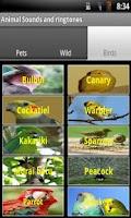 Screenshot of 30 Animal sounds and ringtones