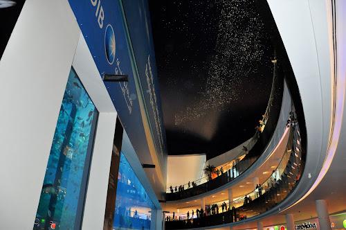 Dubai Mall by Nazir Gohar - Buildings & Architecture Architectural Detail ( dubai mall  dubai   nikond90. photography. photoshop,  )