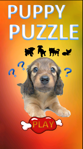 PUPPY PUZZLE - EVALUATING STRUCTURAL QUALITY DVD ...