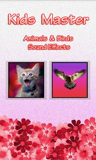 Animals Birds Sound Effects