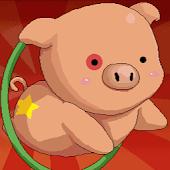 Circus Pig