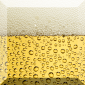 Beer Bubble Live Wallpaper
