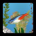 aniPet Freshwater Live WP logo