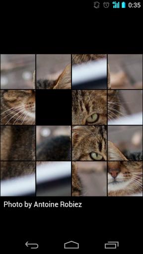 ネコ15パズル