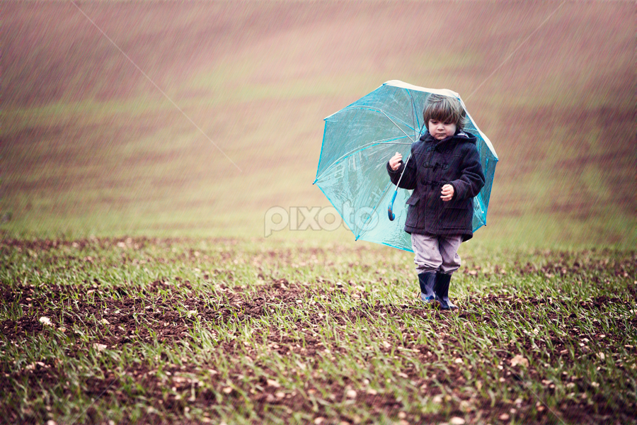 Rainy Day Bunny by Claire Conybeare - Chinchilla Photography - Babies & Children Toddlers ( england, rainy day, little boy, outdoors, umbrella, cute, toddler )