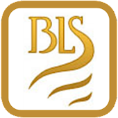 BLS Accident Assistant