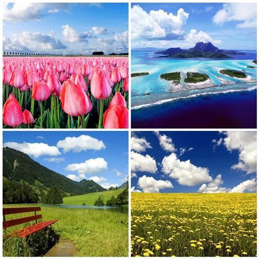 Nature Wallpapers HD LOGO-APP點子
