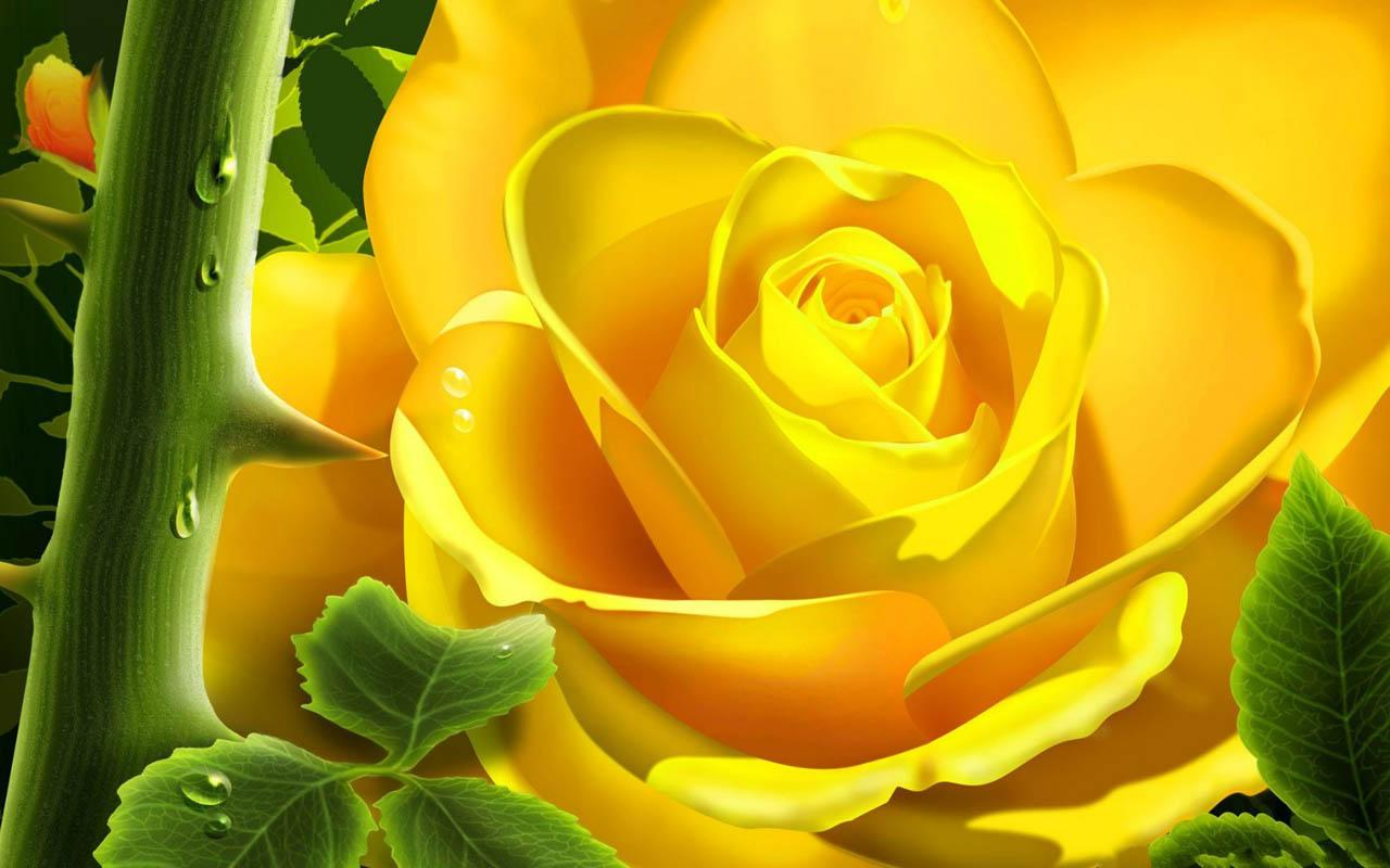 3d rose android apps on google play