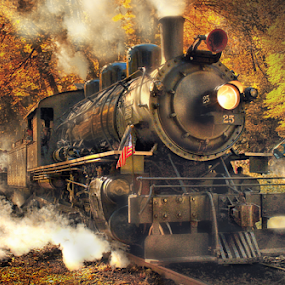 Fall Excursion II by Nickel Plate Photographics - Transportation Trains