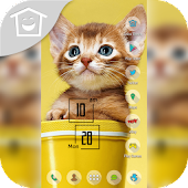Yellow Cat Kitty in Mug Theme