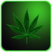 Marijuana Lite