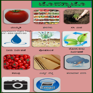 Tomato Kannada- screenshot thumbnail