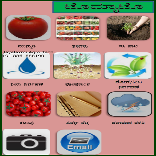 Tomato Kannada- screenshot