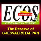 The Gjesvaerstappan Reserve icon