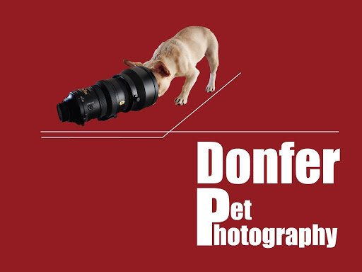 Donfer Pet Photography