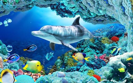 【免費個人化App】超真實3D動態水族館-海底世界-APP點子