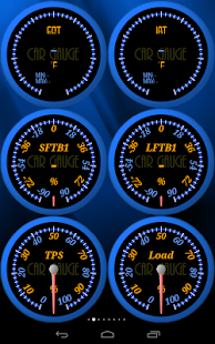 Car Gauge Pro (OBD2 + Enhance)- screenshot thumbnail