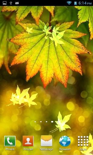 Autumn Bokeh Leaves LWP