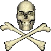 PirateLiveWallpaper