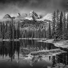Island Lake by William Tipper - Black & White Landscapes ( b&w, black and white, landscape )